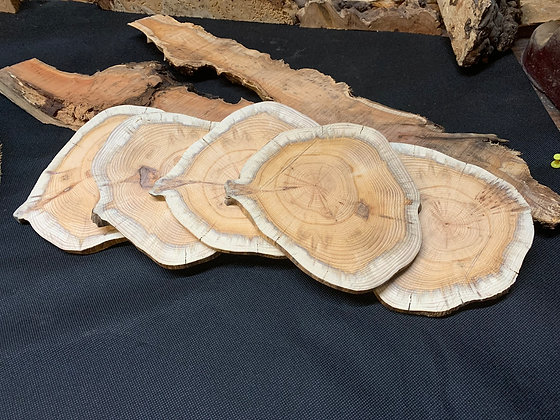 Yew Disc 160mm x 140mm x 10mm