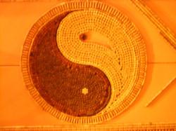 """""""Yin & Yang"""""""