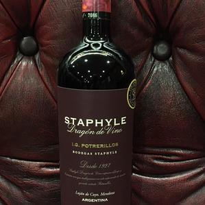 Staphyle Dragon de Vino
