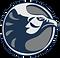 irhs-logo-nighthawk_edited.png