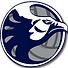 irhs_logo_nighthawk_volleyball.png