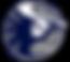 irhs_logo_nighthawk_volleyball.png