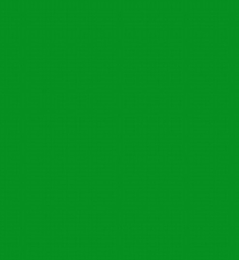 GREEN SCREEN.jpg