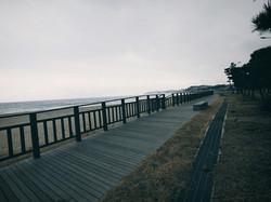 해변 목재 울타리