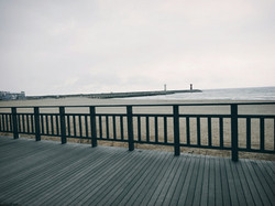 해변 목재 울타리 2