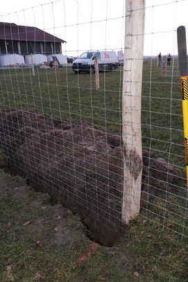 Wolfsschutzzaun eingegraben zum Schutz vor Untergraben