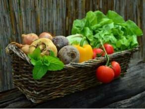 Fødevarer søges til gastronomibranchen i Hamborg og Berlin
