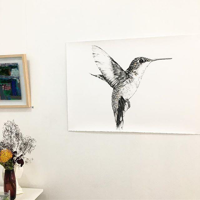 Humming Bird at Gallery 139