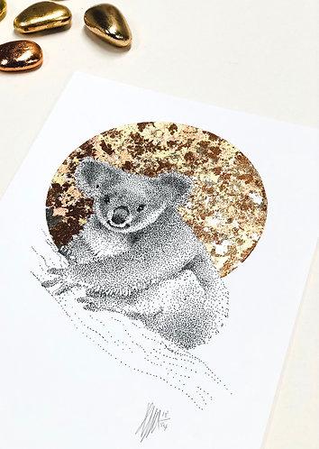 A4 Koala Cares