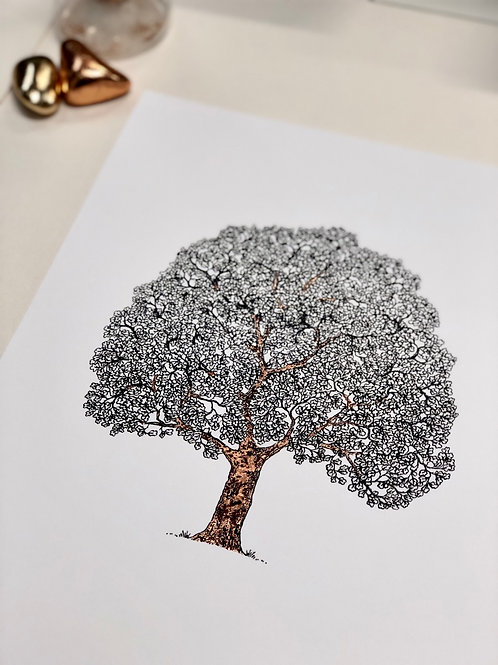 A3 Young Tree