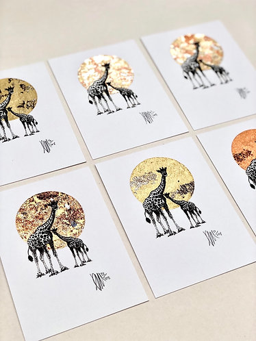 Giraffes S.M