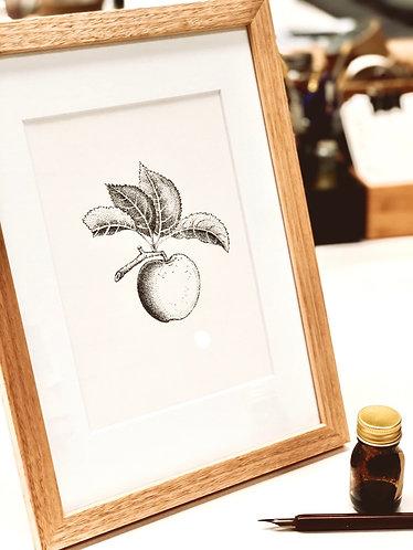Original - Fruit