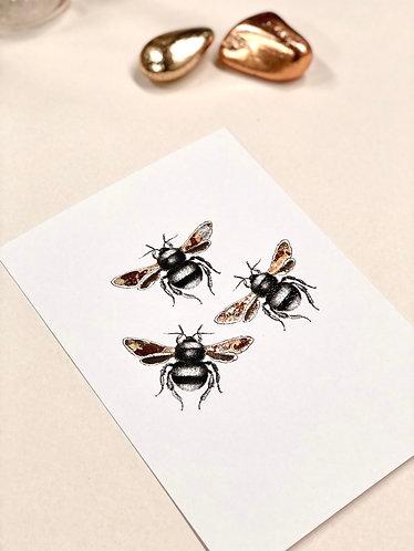A5 Bee Trio