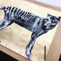 Tasmanian Tiger. 2017 Gallery 139