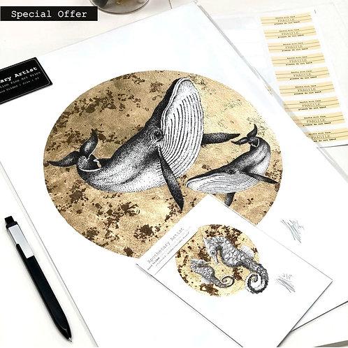 Whales PLUS Seahorse A3