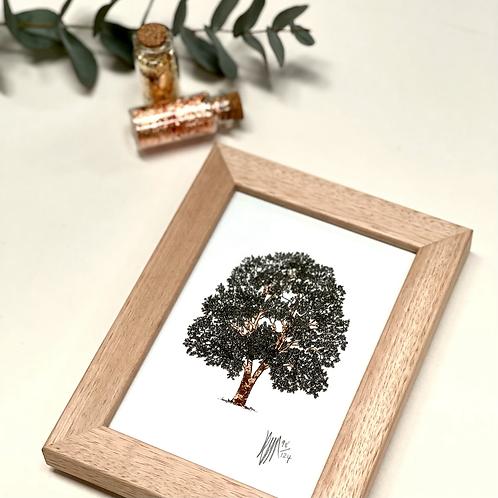 A6 Framed Tree