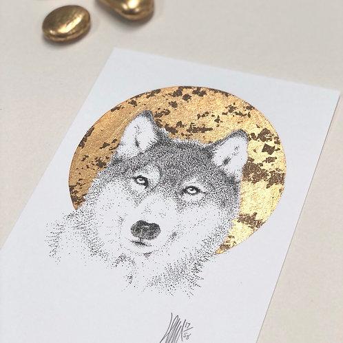 Wolf S M