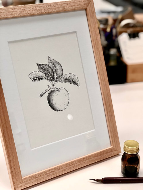 Framed Original Drawing - Fruit