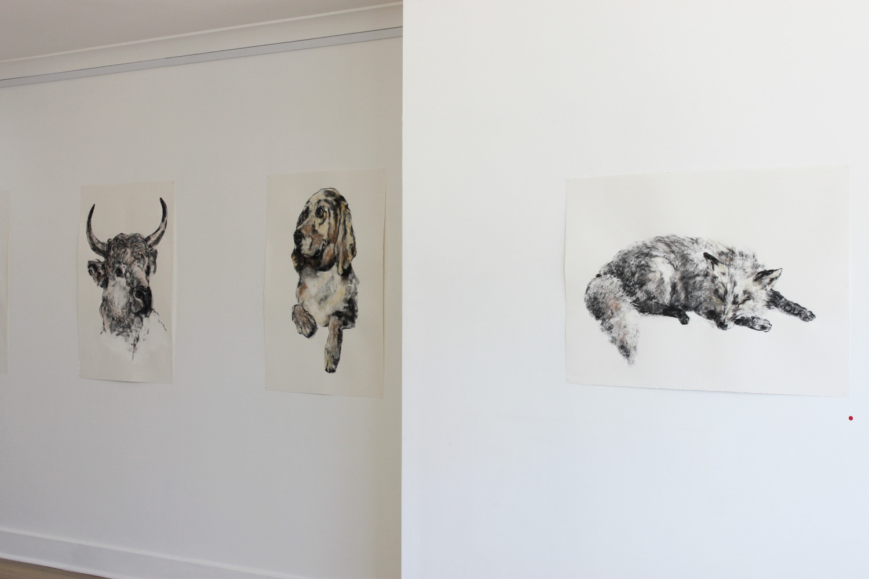 'Whats Golden' Acrux Gallery