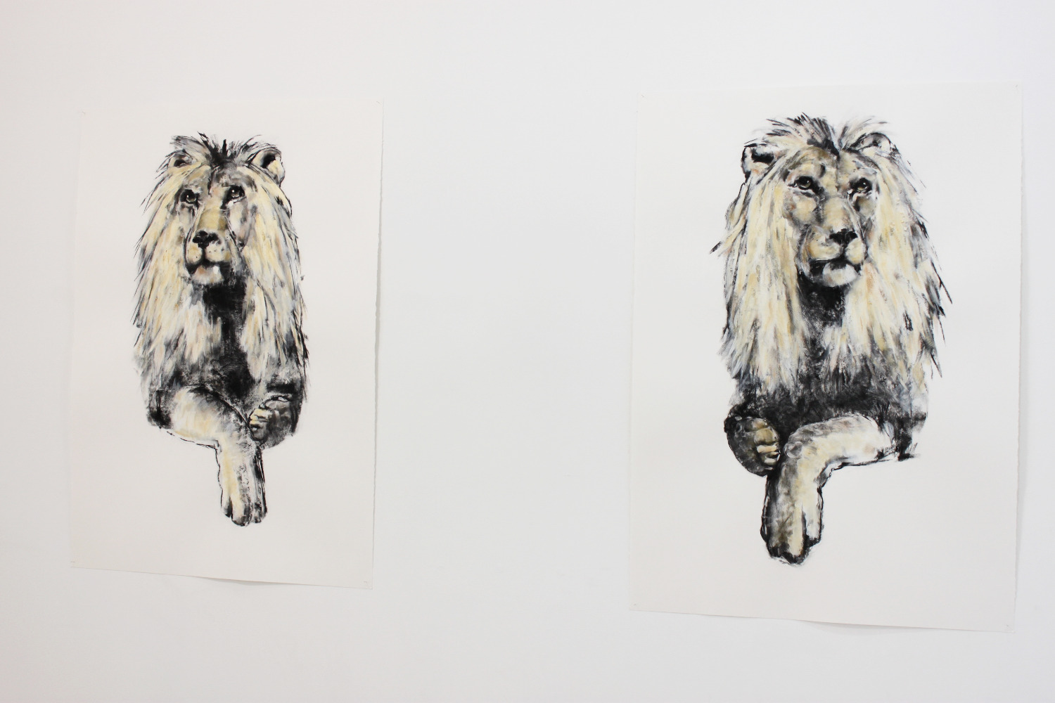 two free lions