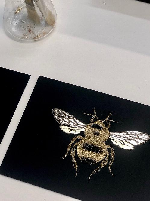 A5 Velvet Bee