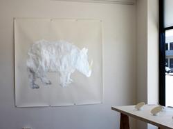 silver rhino golden horn