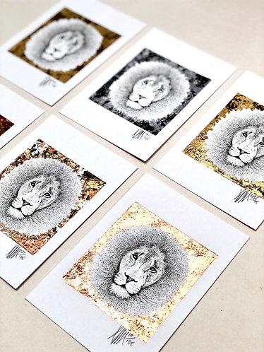Lion A6 A4
