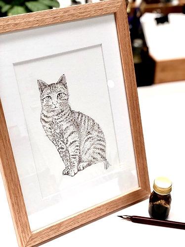 Original - Cat