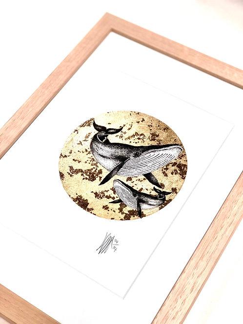 A4 Hand-Made Tasmanian Oak Frame with Whales