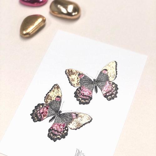 Butterflies A5