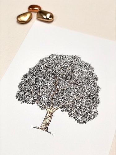 TreeOfLife XL