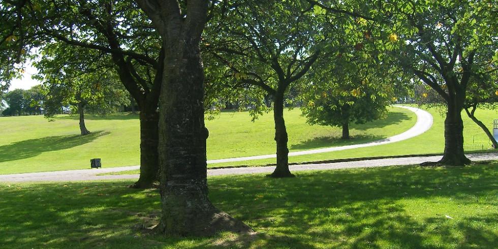 Sherdley Park Cross Country - Saturday League