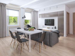 Кухня и гостиная (25 кв.м.)