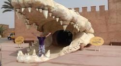 Bienvenue_à_Crocoparc_Agadir