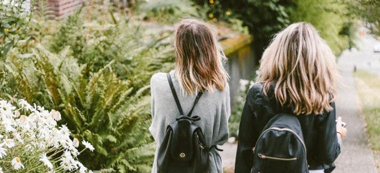 Vänner på väg hem