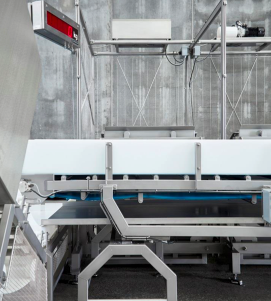 Pet Food Production Line Weighing
