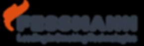 logo-fessmann.png