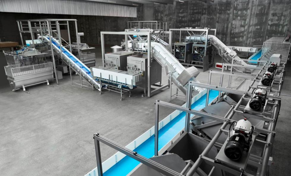 Pet Food Production Line Conveyors