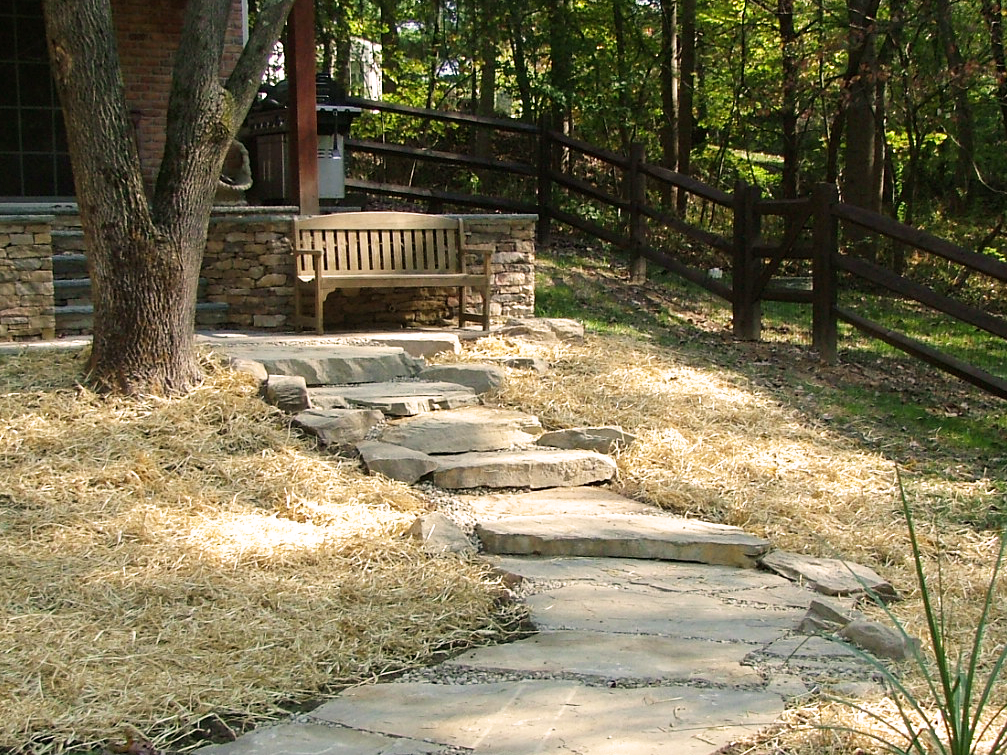 Stepping path with natural stones