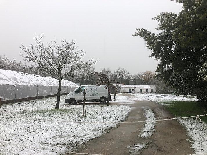 neige janvier 2021.jpg