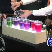 Homemade Acid and Base Indicators