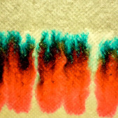 Time Lapse Color Separation of Marker Ink