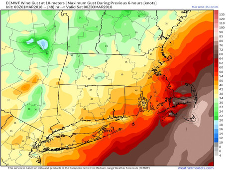 Details on the Monster Nor'Easter That Will Include 80 MPH Wind Gusts, 20 Inches of Snow, and 4