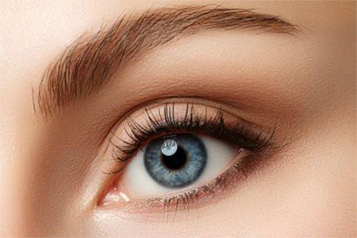 lash and brow.jpeg