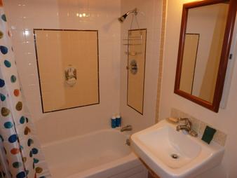 South Bathtub and Sink