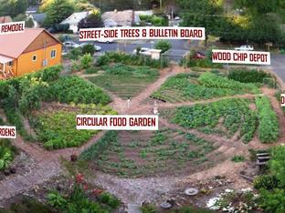 Circular Garden 7-15-2013