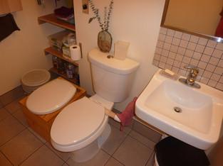 Half Bath Toilets and Sink