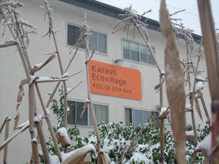 Snow Storm Dec-2008