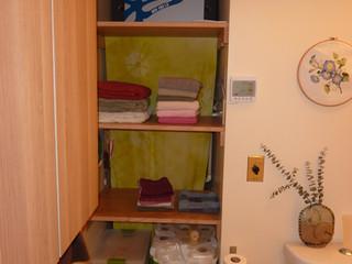 Half Bath HRV Closet
