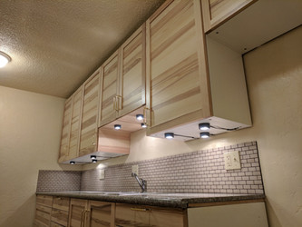 South Kitchen Cabinets Showing Lighting